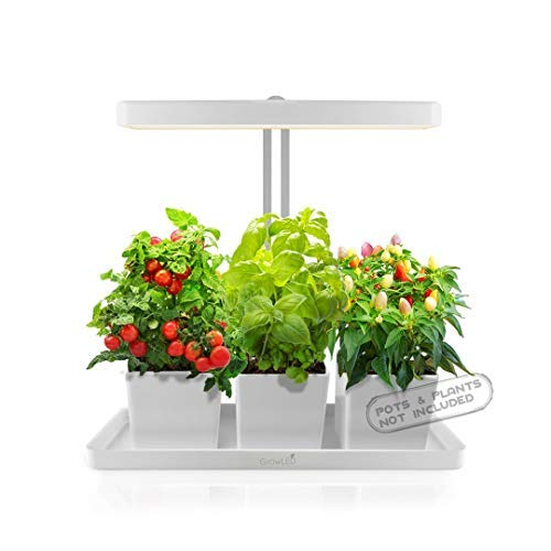 GrowLED LED Indoor Garden, Herb Garden, Kitchen Garden, Height Adjustable, Automatic Timer, 24V Low Safe Voltage, Ideal for Plant Grow Novice Or Enthusiasts, Various Plants, DIY Decoration, White