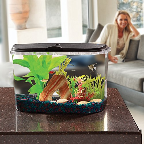 Koller Products PanaView 5-Gallon Aquarium Kit - Power Filter - LED Lighting, (AQ15005)